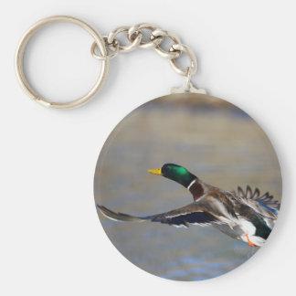 duck basic round button key ring
