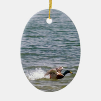 Duck Landing in Water Christmas Ornament