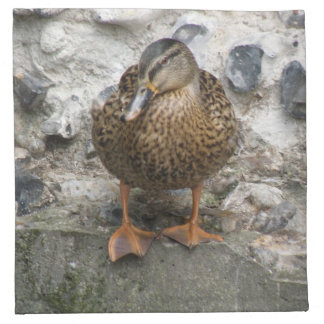 Duck on a Wall Napkin
