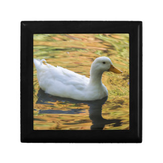 duck on lake small square gift box