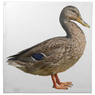 duck on rock at lake napkin