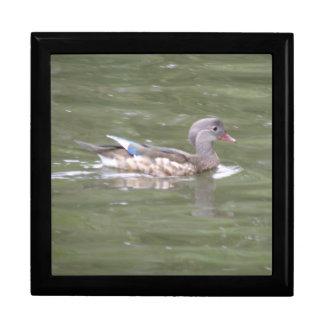 Duck on the Lake Gift Box