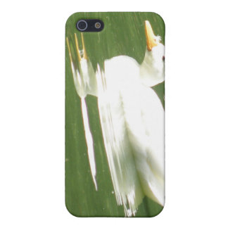 Duck on the Water  iPhone 5/5S Case