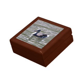Duck On Water Gift Box