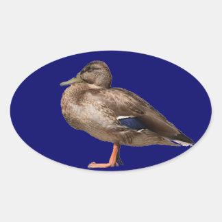Duck Oval Sticker