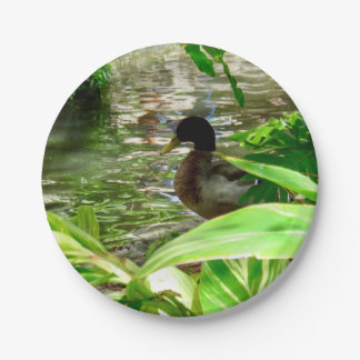 "Duck Paper Plates 7"""