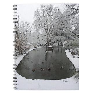 duck pond notebooks