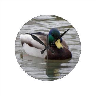 duck round clock