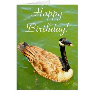 Duck says Happy Birthday! Greeting Card