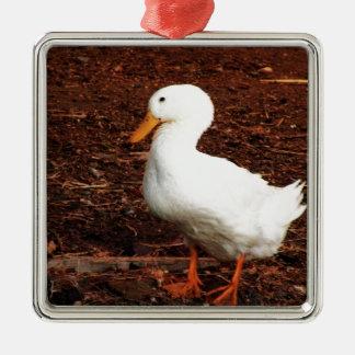 Duck Silver-Colored Square Decoration