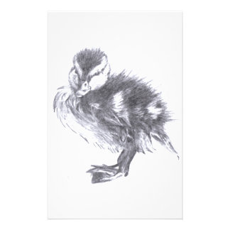 Duck Sketch Stationery