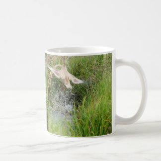 Duck Take Off, Before & After Coffee Mug