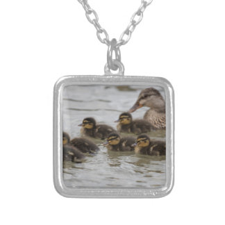 duck with her ducklings at lake silver plated necklace