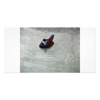 Ducking Around Personalized Photo Card