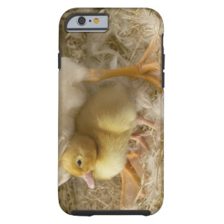 Duckling between mother's legs tough iPhone 6 case