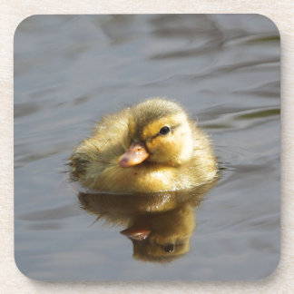 Duckling Beverage Coaster