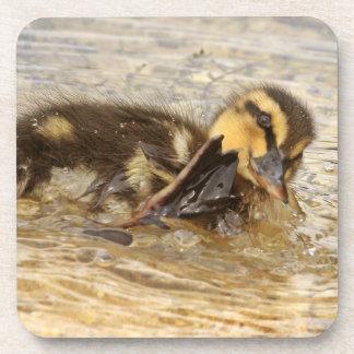 Duckling Cork Coaster