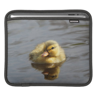 Duckling iPad Sleeve