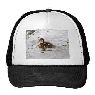 Duckling Mesh Hat