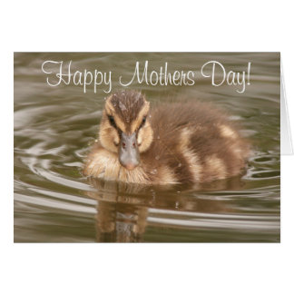 Duckling Mothers' Day Card
