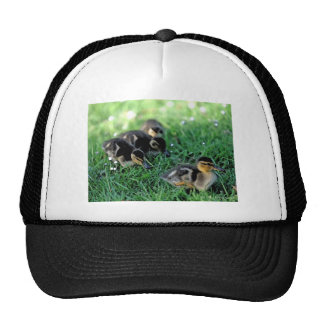 Duckling Parade Hats