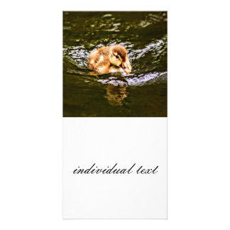 duckling personalized photo card