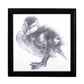 Duckling Sketch Gift Box