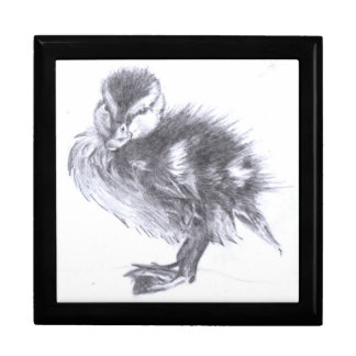 Duckling Sketch Large Square Gift Box