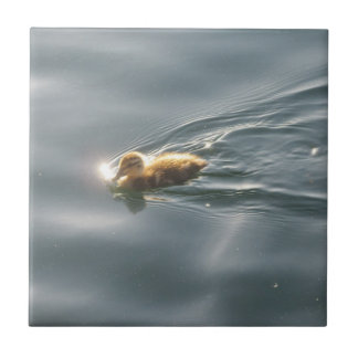 Duckling Swimming Tile