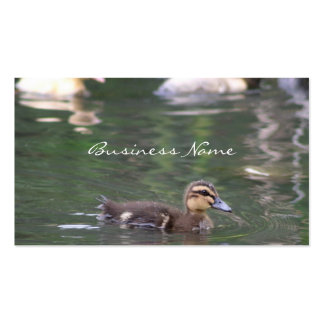 Ducklings business card