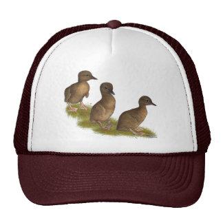 Ducklings:  Chocolate Runners Cap