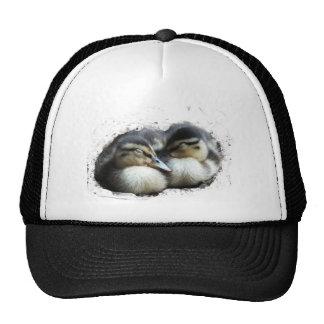 Ducklings Mesh Hats