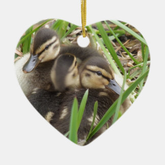 Ducklings in Spring Christmas Ornament