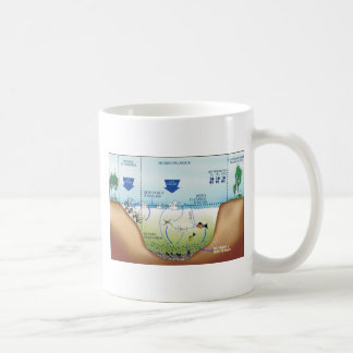ducklings in the lagoon didactic project mugs