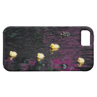 ducklings iPhone 5 cases