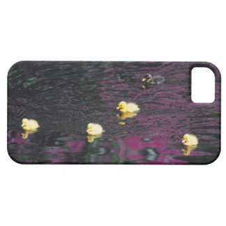 ducklings iPhone 5 cover