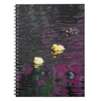 ducklings spiral notebook