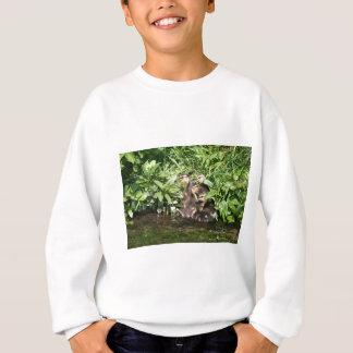 Ducklings Sweatshirt