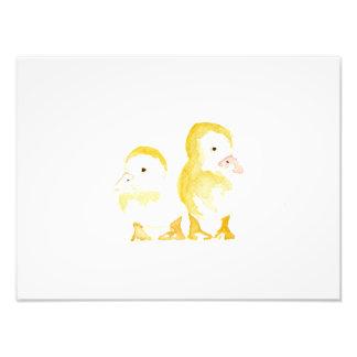 Ducklings Watercolour Art Photo