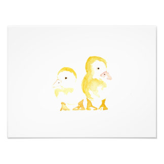 Ducklings Watercolour Photo Print