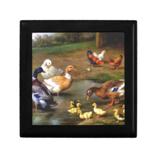 Ducks and ducklings gift box
