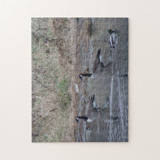 Ducks And Geese Jigsaw Puzzle