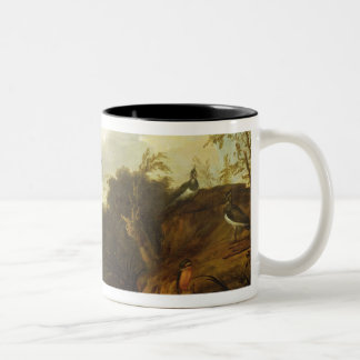 Ducks and other birds about a stream in an Italian Two-Tone Coffee Mug