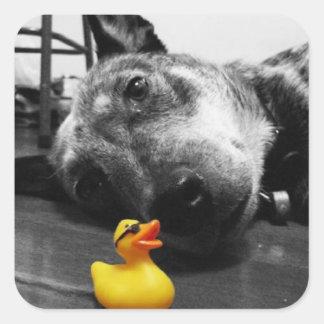 'Duck's Best Friend' Rubber Duck Sticker