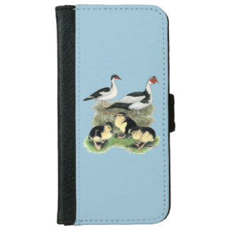 Ducks Black Pied Muscovy Family iPhone 6 Wallet Case