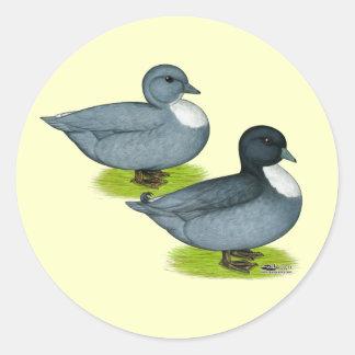 Ducks:  Blue Calls Round Sticker