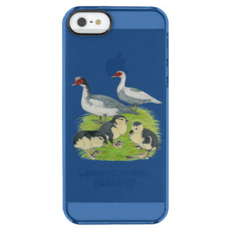 Ducks Blue Pied Muscovy Family Clear iPhone SE/5/5s Case