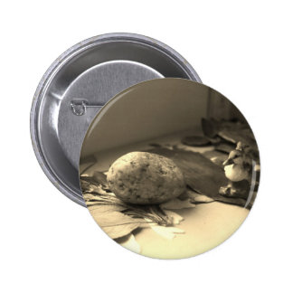 Ducks Button