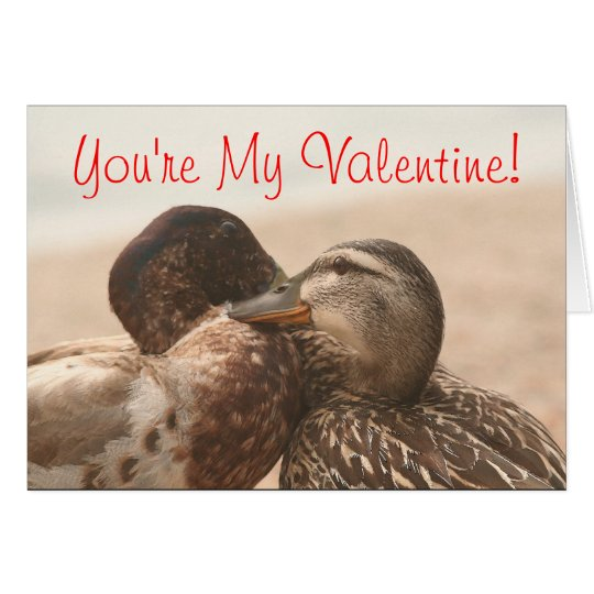 Ducks Funny Still My Valentines Card