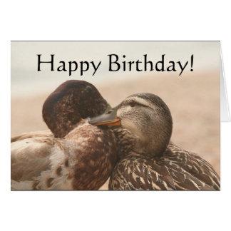 Ducks Happy Birthday Card